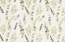 Eucalyptus Blätter