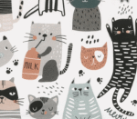 Katzenparty