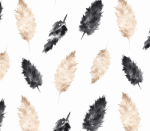 pampas feather