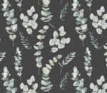 Schwarze Eukalyptus Blätter