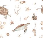 Turtlelife
