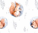 Winterwoodland Eichhörnchen