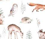Winter Woodland Tiere